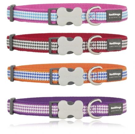 Red Dingo Dog collar Fang It design